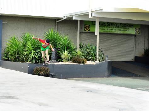 Jayden - Bs tails over a planter