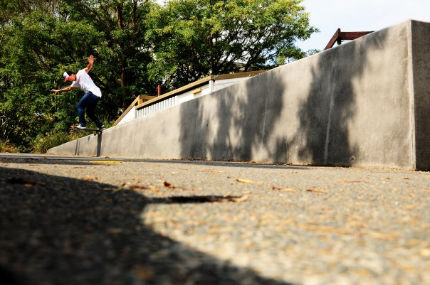 Pedro Bs Tailslides a downhill ledge
